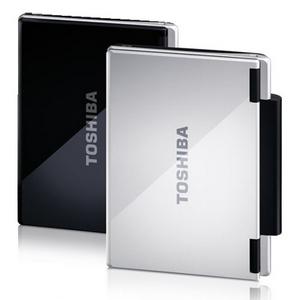 Hausmannskost: Toshiba NB 100-10Y